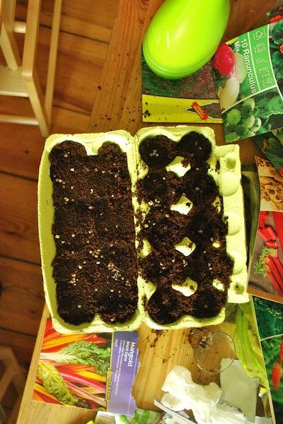 Zumindest habe ich rechtzeitig mit dem Sammeln von Eierkartons begonnen.
